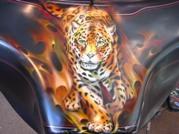 Fuselage_tigre